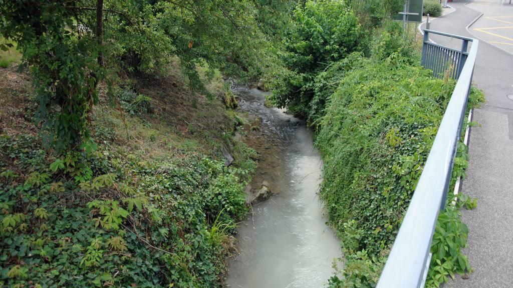 Gewässerverschmutzung wegen Ökoheizungen