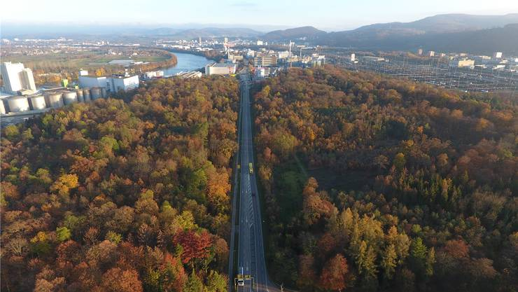 Die heute dreispurige Rheinfelderstrasse durch den Hardwald.