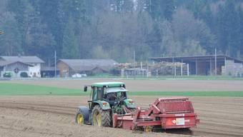 Die Idylle trügt. Die Aargauer Bauern müssen den Gürtel noch enger schnallen.