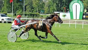 7500 Zuschauer, die am Wettschalter rund 76000 Franken umsetzten, sahen im Hauptereignis ein überlegenes Siegerduo: Swedishman mit Patricia Felber im Sulky.
