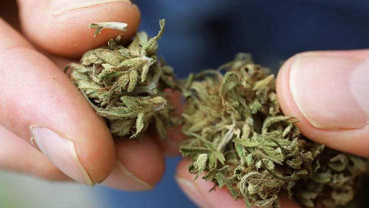 Der Besitz von Cannabis in geringfügiger Menge ist laut Betäubungsmittelgesetz nicht strafbar.