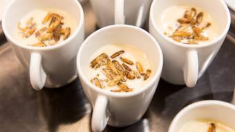 Eine Suppe mit Grillen. (Symbolbild)