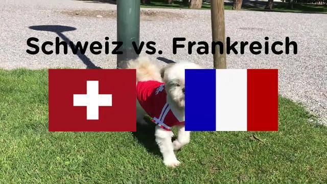 EM-Orakel: Schweiz vs. Frankreich