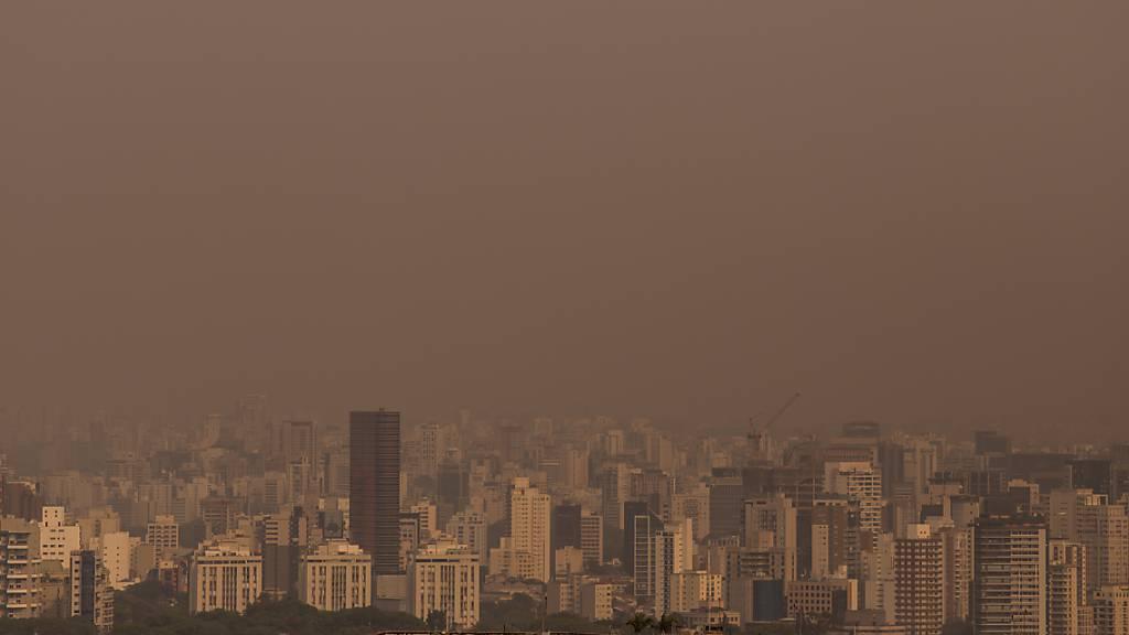 Wegen Rauch von Waldbränden: Bolsonaro-Flugzeug muss durchstarten