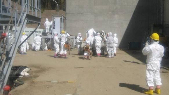 Gefährlicher Einsatz: Arbeiter beim havarierten AKW Fukushima