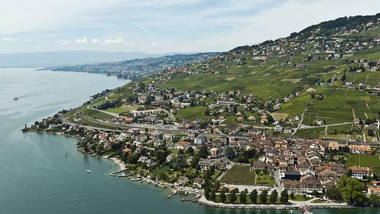 5382 Personen wurden im letzten Jahr in der Schweiz pauschal besteuert, fast die Hälfte davon wohnt in den Kantonen Waadt (1260) und Wallis (1231). Im Bild die Rebberge im Lavaux bei Cully VD (Archiv)