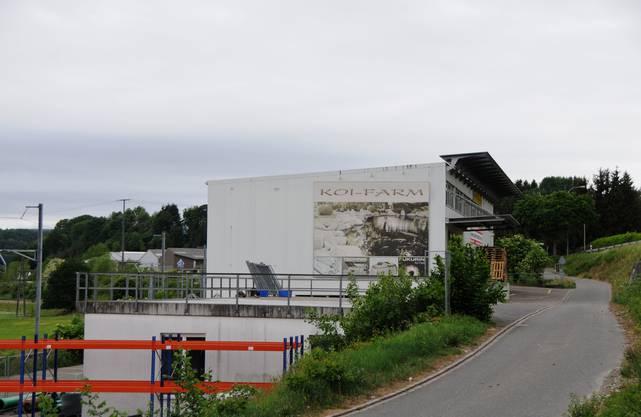 Das im Januar ausgebrannte Lager- und Bürogebäude der Fischzucht in Klingnau (Firma Tegatec von Bernhard Kaufmann) ist vor kurzem abgerissen worden.