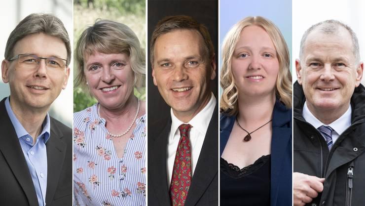 Fünf von zwölf Kandidaten, die in den Regierungsrat wollen.