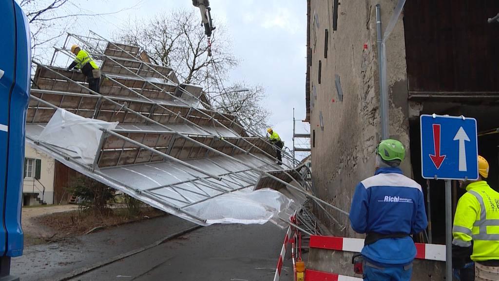 Umgestürzte Bäume und Unfälle: Lolita fegt über die Schweiz