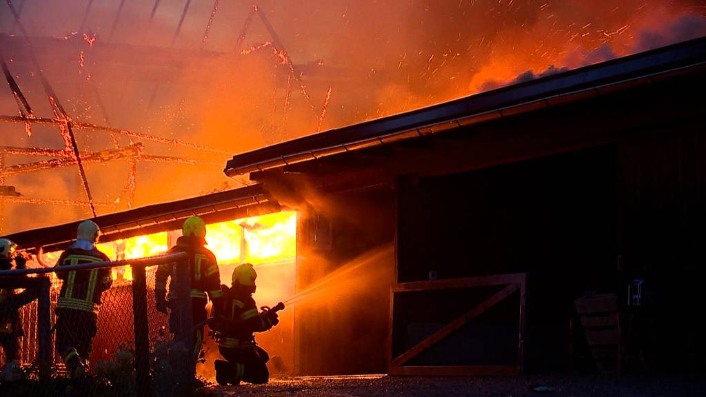 Pferdestall in Vollbrand – 100 Feuerwehrleute im Einsatz