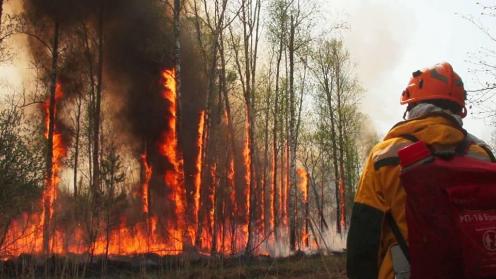 Im Kampf gegen die verheerenden Waldbrände in Russland bekommen die Einsatzkräfte weitere Verstärkung vom Militär.