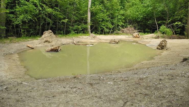 Durch den Rückbau des Wasserreservoirs Wolfensberg entstand eine grosse Grube. Aus dieser will die Stadt zwei grosse Naturteiche anlegen.