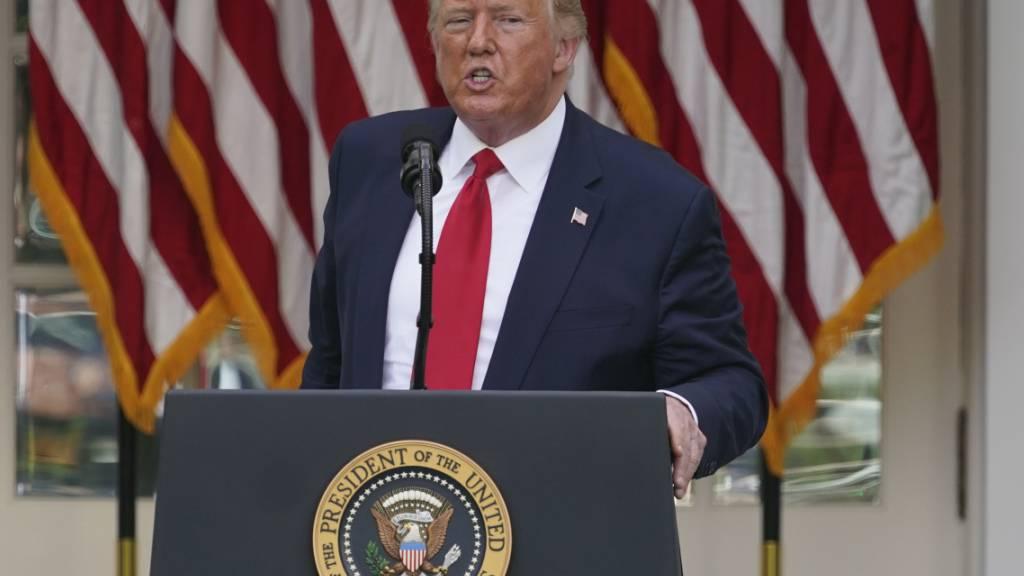 Trump will gegen Social Media-Unternehmen vorgehen