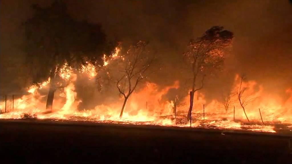Brand in Los Angeles: 10 Tausende evakuiert