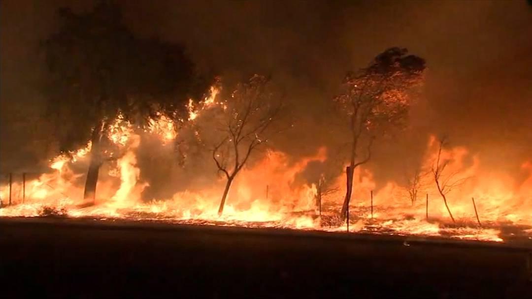 Brand in Los Angeles: 100 Tausende evakuiert