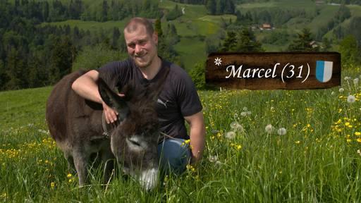 Bauer, ledig, sucht... ST16 - Portrait Marcel 31 (LU)