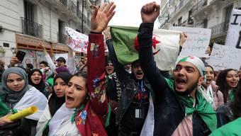 Algerische Studenten protestieren gegen die Obrigkeit.