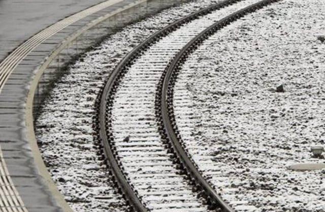 Die Pferde wurden im Bahnhof von einem Zug erfasst. (Symbolbild)