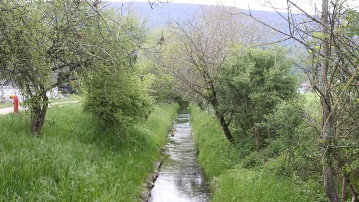 Der Dorfbach soll renaturiert werden.