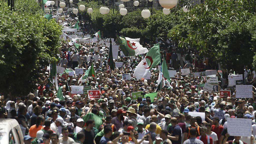 Tausende gehen in Algier gegen die Übergangsregierung auf die Strasse, weil deren Amtszeit abgelaufen ist.