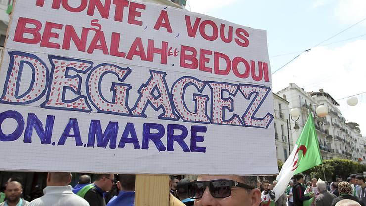 """""""Wir haben Euch satt - haut ab"""" steht, an die Machthaber gerichtet, auf einem Schild, das Protestierende an der Freitagsdemonstration in der algerischen Hauptstadt mit sich führen"""