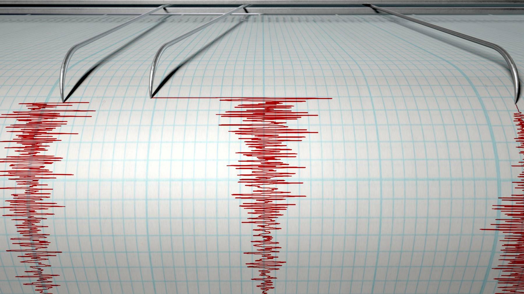 Die Seismographen in der Schweiz schlagen immer wieder mal aus (Symbolbild).