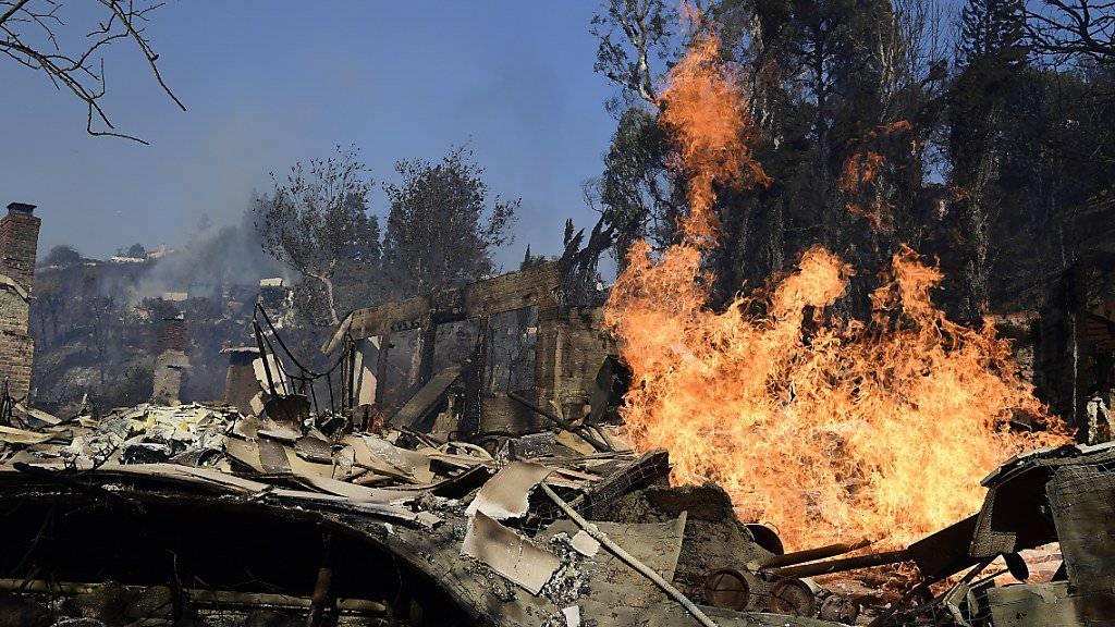 Die verheerenden Waldbrände in Kalifornien werden von den Santa-Ana-Winden angefacht. Die Brände haben das Prominentenviertel Bel Air in Los Angeles erreicht und bedrohen auch das Getty-Museum. (John Cetrino / EPA)
