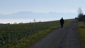 Ländliche Ruhe war 2016 gesucht, Bettwil hat 33 Einwohner mehr als 2015.