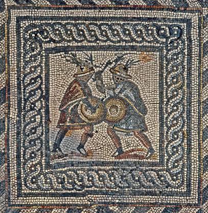 Detailansicht aus dem Gladiatorenmosaik. Dieses wurde aufwändig in Avenches restauriert.