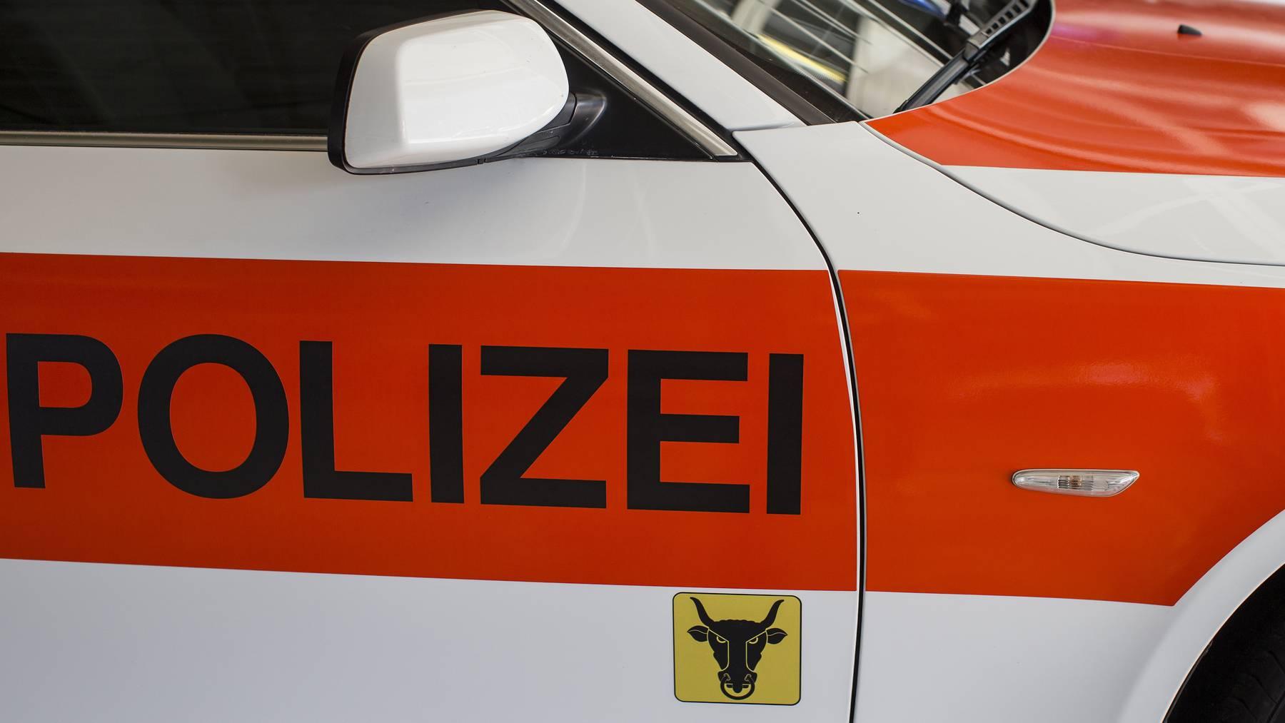 Detailaufnahme eines Einsatzfahrzeuges der Kantonspolizei Uri, aufgenommen am 6. August 2015 in Flueelen