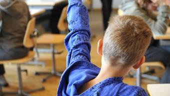 Ab dem Schuljahr 2014/15 soll es regionale Kleinklassen geben. (Symbolbild)