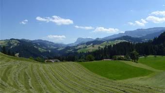 Wer im idyllischen Horrenbach-Buchen lebt, wählt ziemlich sicher SVP.