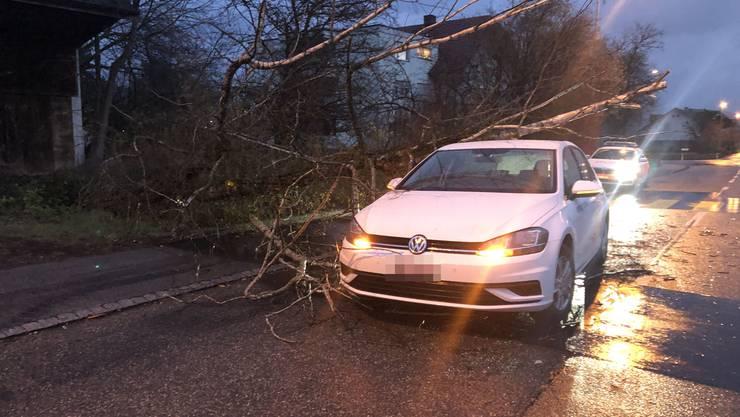In Dulliken traf ein umstürzender Baum ein fahrendes Auto. Verletzt wurde niemand.