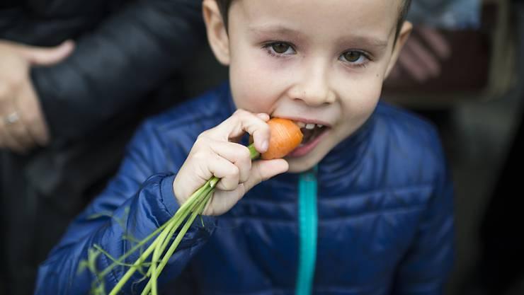 Gemüse steht bei Kindern oft nicht besonders hoch im Kurs. Forschende haben untersucht, wie man Kinder auch bei eher ungeliebten Nahrungsmitteln zum Zugreifen bewegt. (Archivbild)