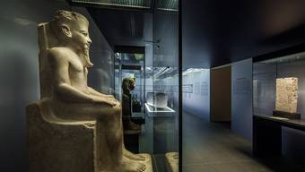 Antikenmuseum