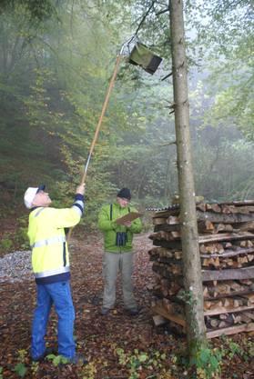 Gemeinderat Beat Bachmann hängt einen Nistkasten zurück an den Baum, Feldornithologe Rico von Känel führt die Statistik nach.