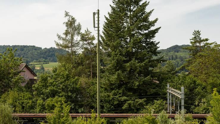 Auch der geplante Umbau dieser Antenne beim Bahnhof Weihermatt sorgte letztes Jahr für Unmut. Anwohnende der Überbauung Mühlebächli sammelten 203 Unterschriften und baten den Gemeinderat, das Bauprojekt von Salt zu sistieren. Derzeit liegt das Baugesuch wegen offener Fragen beim Kanton.