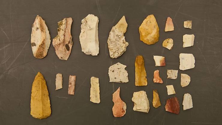 """Feuerstein-Objekte aus der Altsteinzeit: Der Wintersturm """"Burglind"""" hat zur Entdeckung der Funde in einem Schaffhauser Wald beigetragen."""