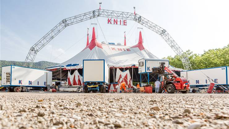 Nächstes Jahr feiert die bekannteste Zirkusfamilie der Schweiz ihr 100-Jahre-Jubiläum.