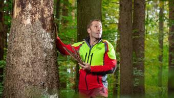 Peter Muntwyler, Förster im Revier Heitersberg, sorgt sich um die Bäume.