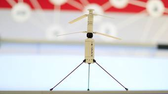 Der französische Waffenhersteller Rafael setzt im Krieg der Zukunft auch auf Drohnen.
