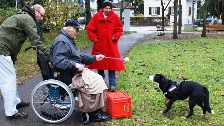 Therapiehündin Gini macht begeistert beim Ballwurfspiel mit. Immer dabei auch Ginis Besitzerin Lotti Berner (im roten Mantel).