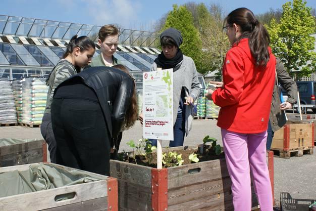 Pflanztag GartenJeden Jugendarbeitprojekt Obersiggenthal am 29.4.2017