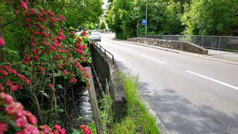 Die marode Aabachbrücke an der Seoner Egliswilerstrasse soll ersetzt werden.