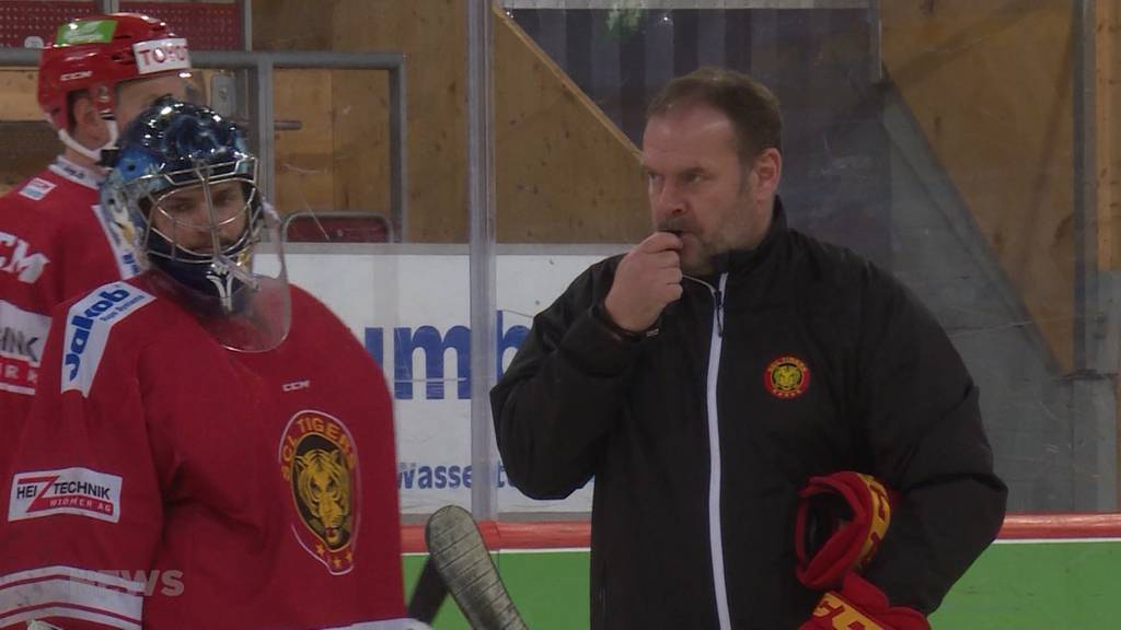Trainerwechsel bei den SCL Tigers: Heinz Ehlers tritt zurück