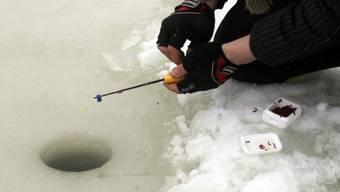 Markierte Goldfische fangen: Volkssport in Estland (Archiv)