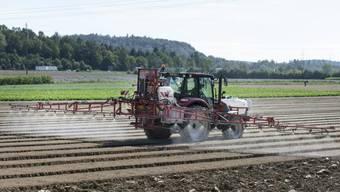Das Bundesamt für Landwirtschaft verbietet Pflanzenschutzmittel, die das Fungizid Chlorothalonil enthalten. (Symbolbild)
