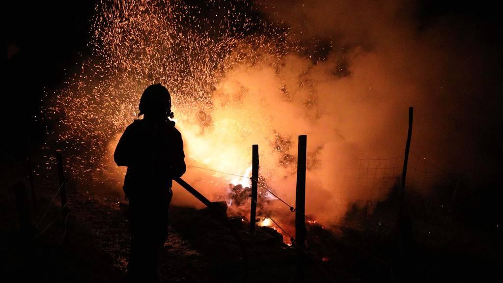 Der Brand konnte durch die Freiwillige Feuerwehr der Stadt Zug gelöscht werden.