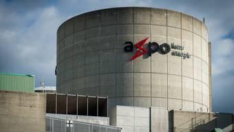Die Axpo investiert 700 Millionen Franken in ihre beiden AKWs auf der Halbinsel Beznau.