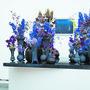 Für Jungtalent Annika Junghans ist das Ausstellen an «Blumen für die Kunst» nicht nur eine grosse Ehre, sondern auch ein Heimspiel: Sie ist in Suhr aufgewachsen.